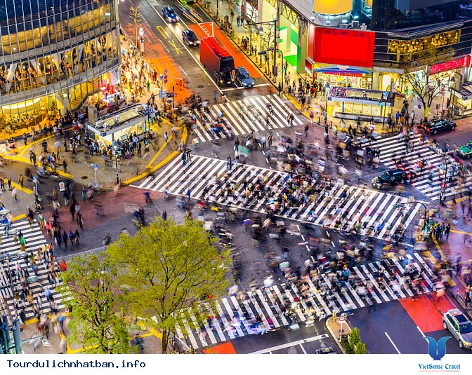 Du lịch Nhật Bản – chiêm ngưỡng vẻ đẹp tuyệt vời của 2 thành phố Kyoto và Tokyo - Ảnh 8