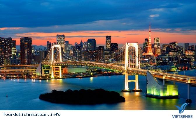 Khám phá đảo nhân tạo Odaiba ở Nhật Bản - Ảnh 1