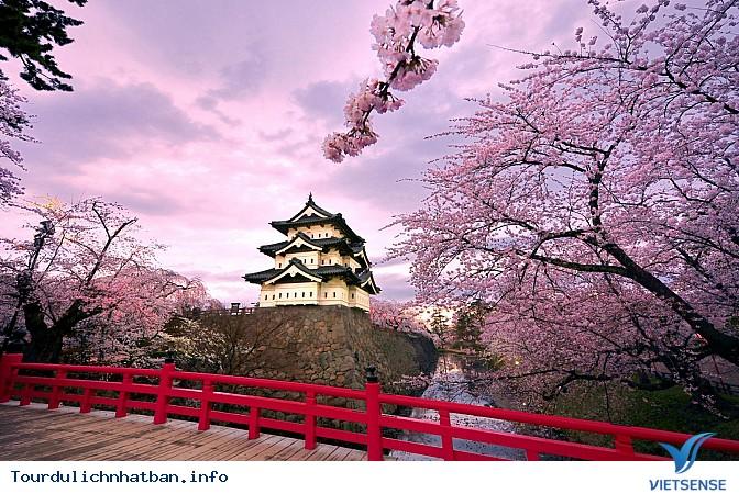 Những trải nghiệm khó quên trong chuyến du lịch Nhật Bản - Ảnh 3
