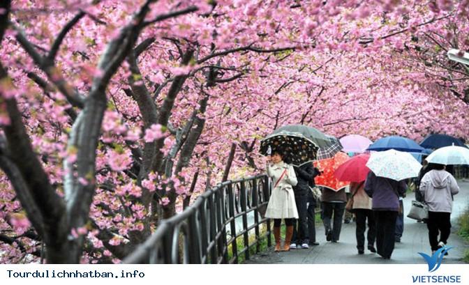 Tham gia những lễ hội đặc sắc nhất tại đất nước Nhật Bản - Ảnh 2