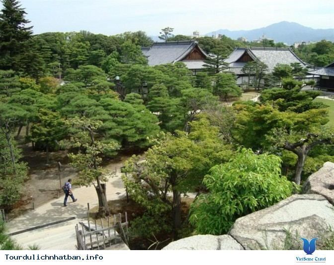 Tour 1 ngày thăm thú Kyoto - Ảnh 3