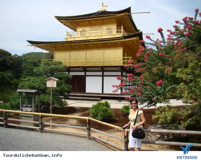Tour 1 ngày thăm thú Kyoto - Ảnh 5