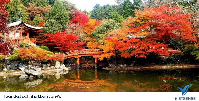 Trải nghiệm đầy thú vị khi du lịch Nhật Bản tháng 9 - Ảnh 2