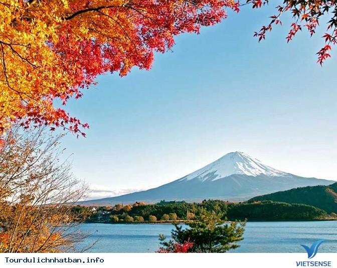 Trải nghiệm đầy thú vị khi du lịch Nhật Bản tháng 9 - Ảnh 5