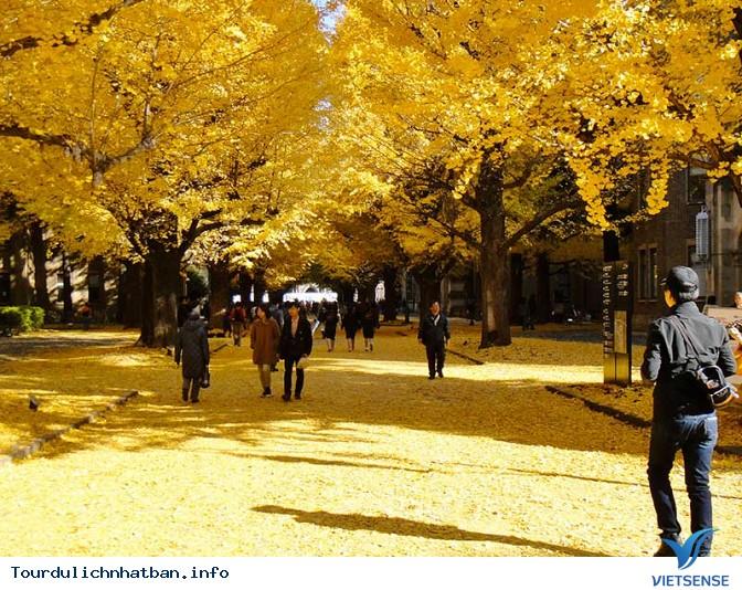 Trải nghiệm đầy thú vị khi du lịch Nhật Bản tháng 9 - Ảnh 1