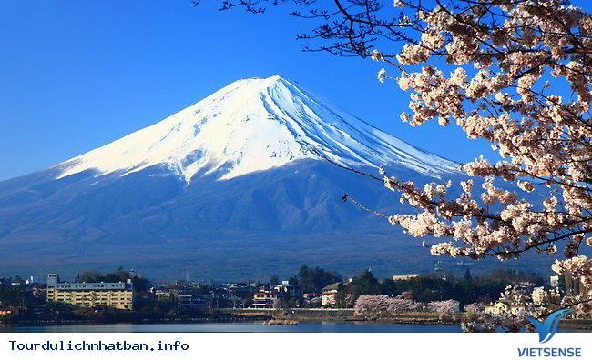 18 điều thú vị về đất nước Nhật Bản mà bạn nên biết - Ảnh 1