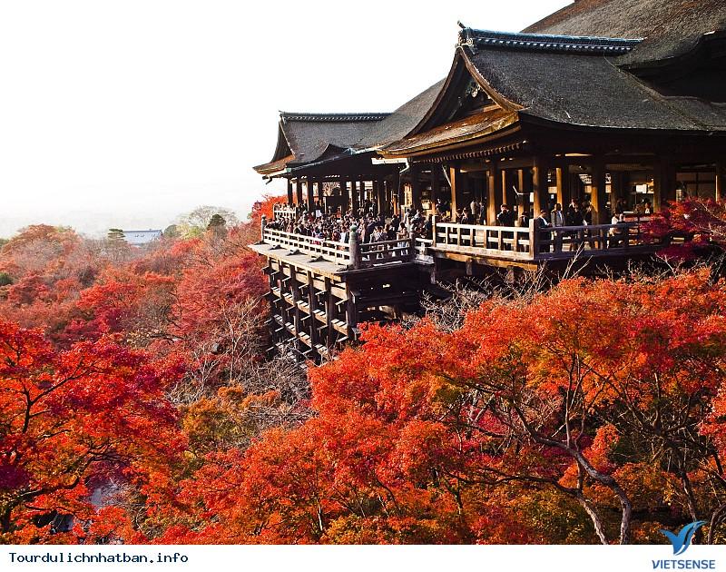 Đến Cố Đô Kyoto- Chiêm Ngưỡng Chùa Thanh Thủy Kiyomizu-dera - Ảnh 1
