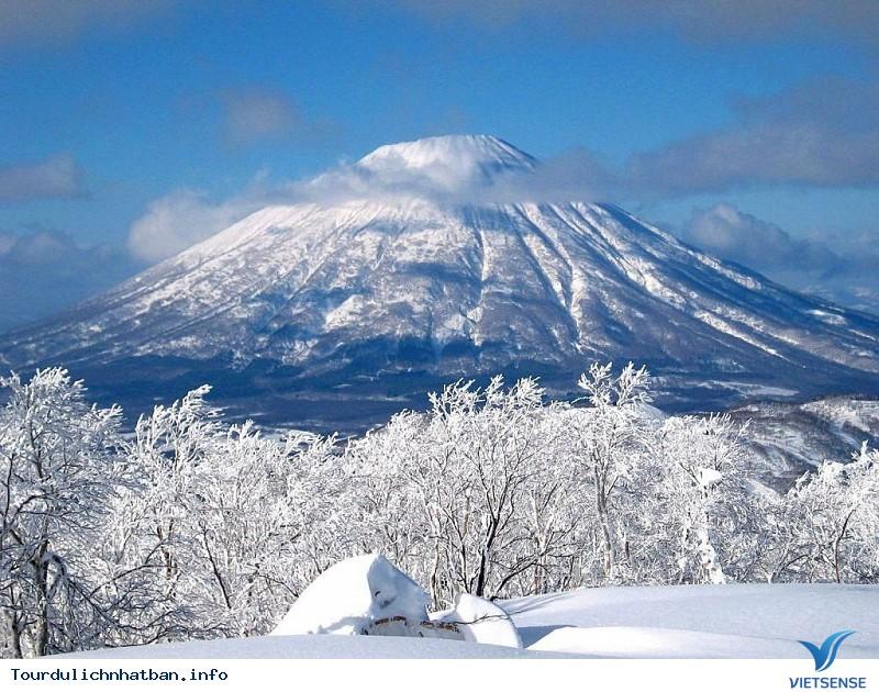 Núi Phú Sĩ- Linh Hồn Của Nhật Bản - Ảnh 5