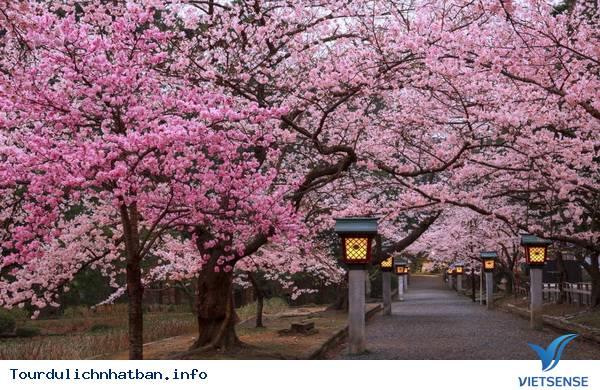 Ý Nghĩa Những Tên Gọi Khác Của Đất Nước Nhật Bản - Ảnh 4
