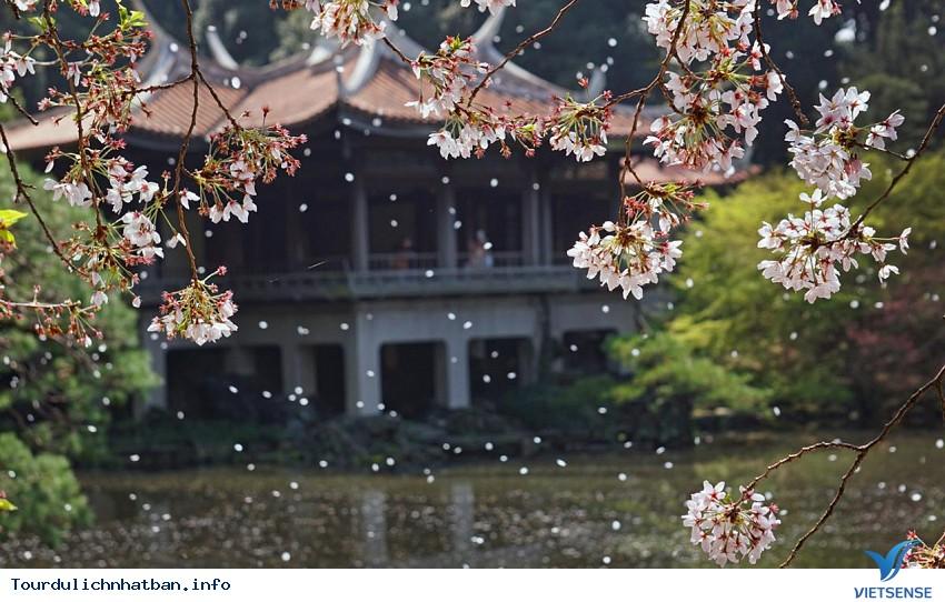 4 địa điểm chụp ảnh cưới trên cả tuyệt vời ở Nhật Bản - Ảnh 3