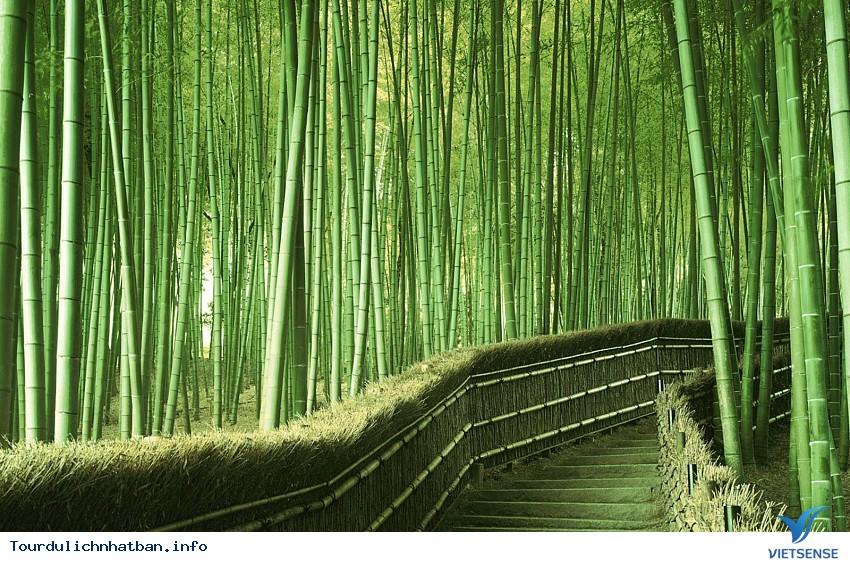 4 địa điểm chụp ảnh cưới trên cả tuyệt vời ở Nhật Bản - Ảnh 2