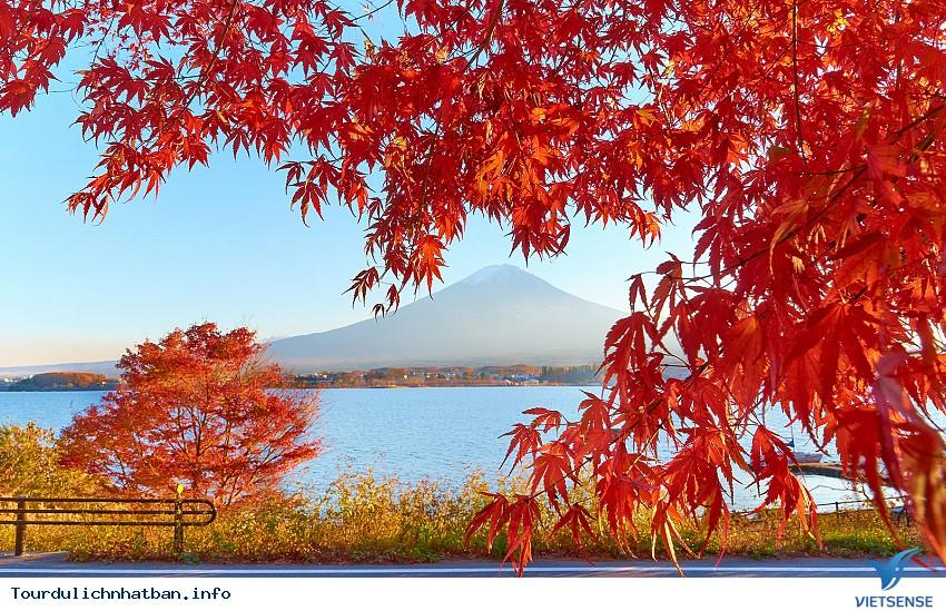 Lời khuyên bổ ích cho chuyến du lịch Nhật Bản hoàn hảo - Ảnh 2