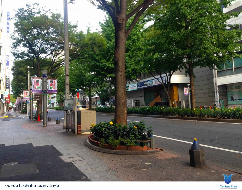 Ngắm khung cảnh bình yên vào buổi sáng của các thành phố lớn của Nhật Bản - Ảnh 5