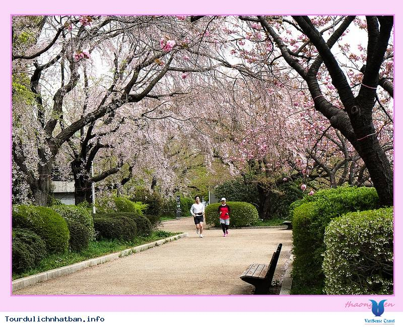 Blog Nhật Ký Du Lịch Nhật Bản - Nhật Bản Những Ngày Mùa Xuân,blog nhat ky du lich nhat ban  nhat ban nhung ngay mua xuan