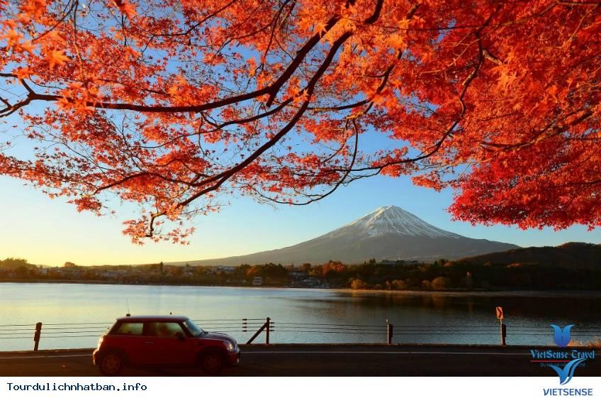 Cảm Nhận Mùa Thu Nhật Bản Qua Hình Ảnh Sắc Lá Đỏ,cam nhan mua thu nhat ban qua hinh anh sac la do
