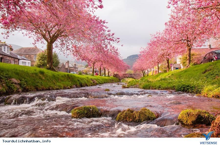 Để có chuyến du lịch Nhật Bản trọn vẹn phải làm gì? - Ảnh 3