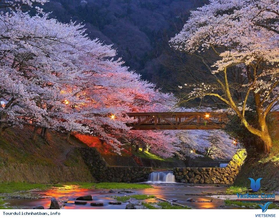 Du Lịch Nhật Bản 5D4N: TOKYO - KAWAGUCHi - HANKONE - FUJI,du lich nhat ban 5d4n tokyo  kawaguchi  hankone  fuji
