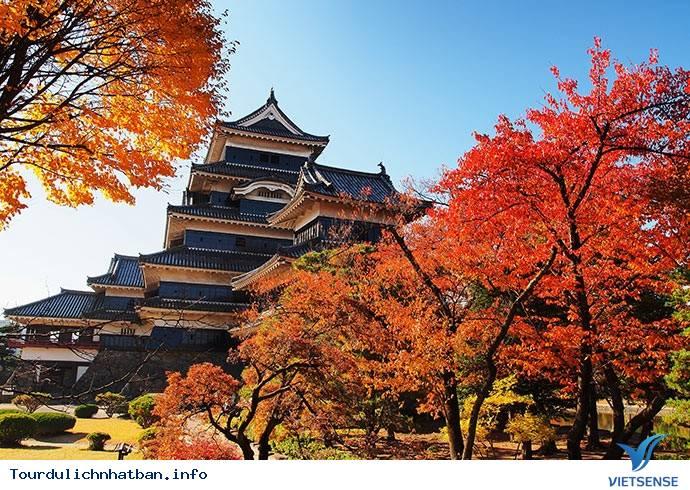 Du Lịch Nhật Bản Mùa Thu Ngắm Vẻ Đẹp Lá Phong Rực Rỡ,du lich nhat ban mua thu ngam ve dep la phong ruc ro