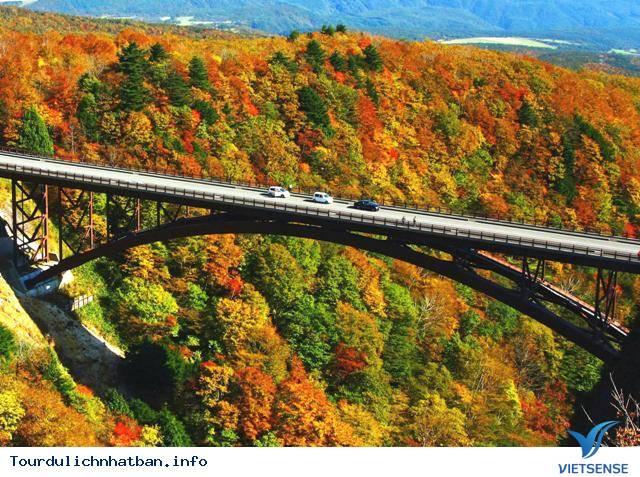 Fukushima - tuyết rơi trắng trời sau mùa lá đỏ Nhật Bản - Ảnh 2