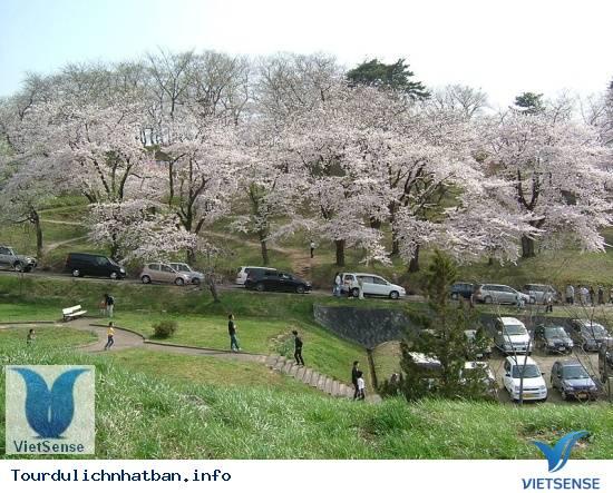 Giới Thiệu Đôi Nét Về Đất Nước Nhật Bản - Ảnh 2