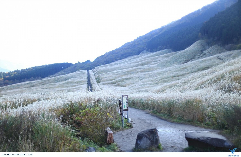 Hakone - Thiên Đường Nghỉ Dưỡng Tại Nhật Bản - Ảnh 5