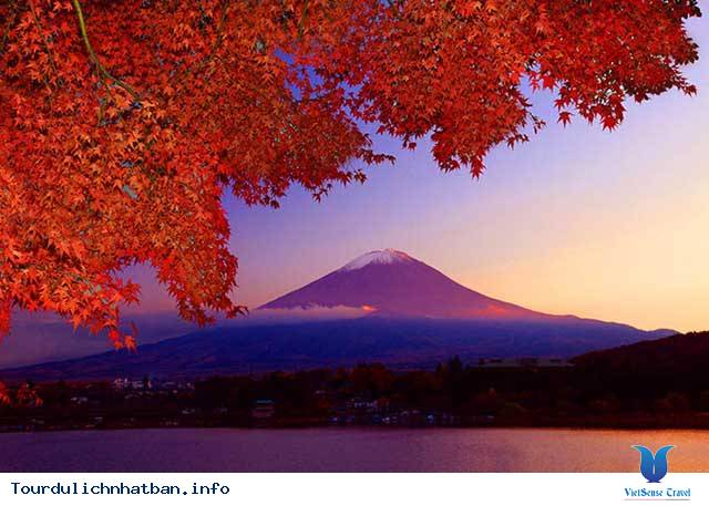 Mùa nào đẹp nhất ở Nhật Bản?,mua nao dep nhat o nhat ban
