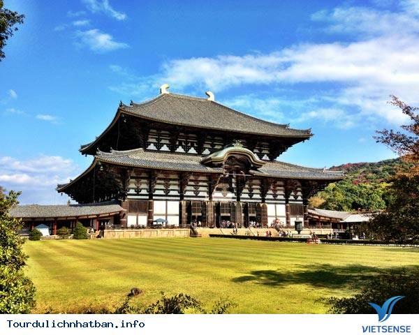 Nara - Nét duyên thầm trong lòng Nhật Bản - Ảnh 1