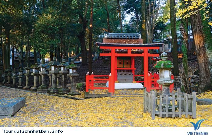 Nara - Nét duyên thầm trong lòng Nhật Bản - Ảnh 2
