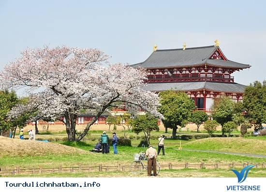 Nara - Nét duyên thầm trong lòng Nhật Bản - Ảnh 5