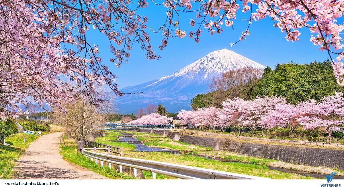 Nên Đi Đu Lịch Nhật Bản Vào Thời Điểm Nào Là Đẹp Nhất? - Ảnh 2