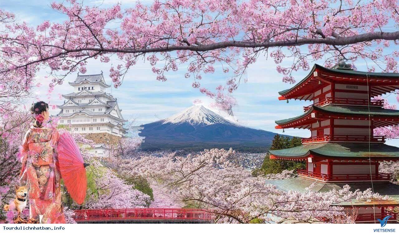 Nên Đi Đu Lịch Nhật Bản Vào Thời Điểm Nào Là Đẹp Nhất? - Ảnh 3