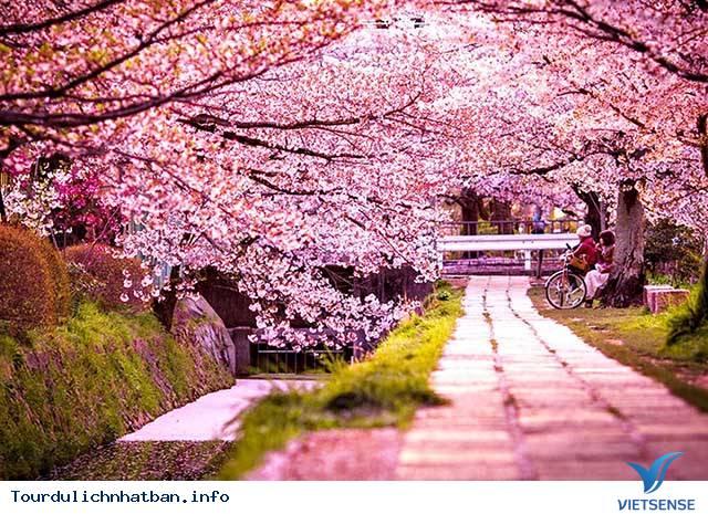 Nhật Bản có gì nổi tiếng?,nhat ban co gi noi tieng