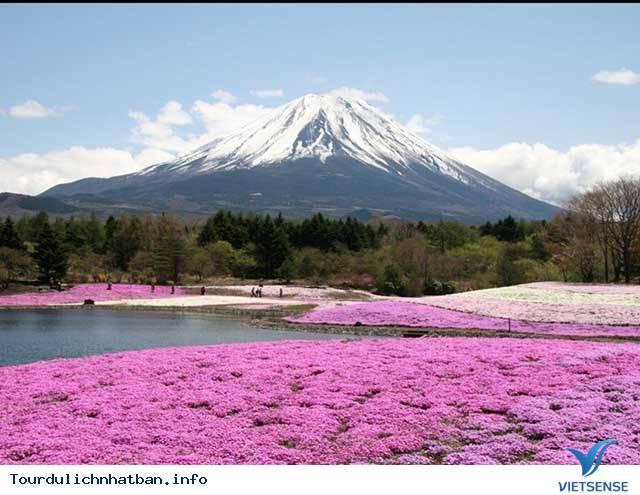 Nhật Bản nổi tiếng về cái gì?,nhat ban noi tieng ve cai gi
