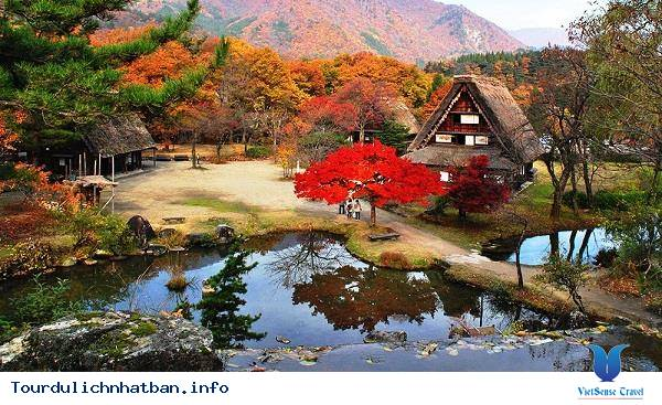 Những địa điểm ngắm lá đỏ tuyệt vời khi đi du lịch Nhật Bản - Ảnh 4