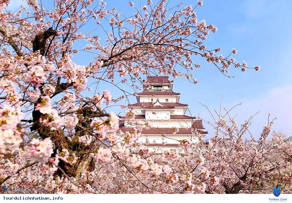 Những điểm tham quan cổ kính ở Nhật Bản thích hợp để bạn du xuân - Ảnh 4