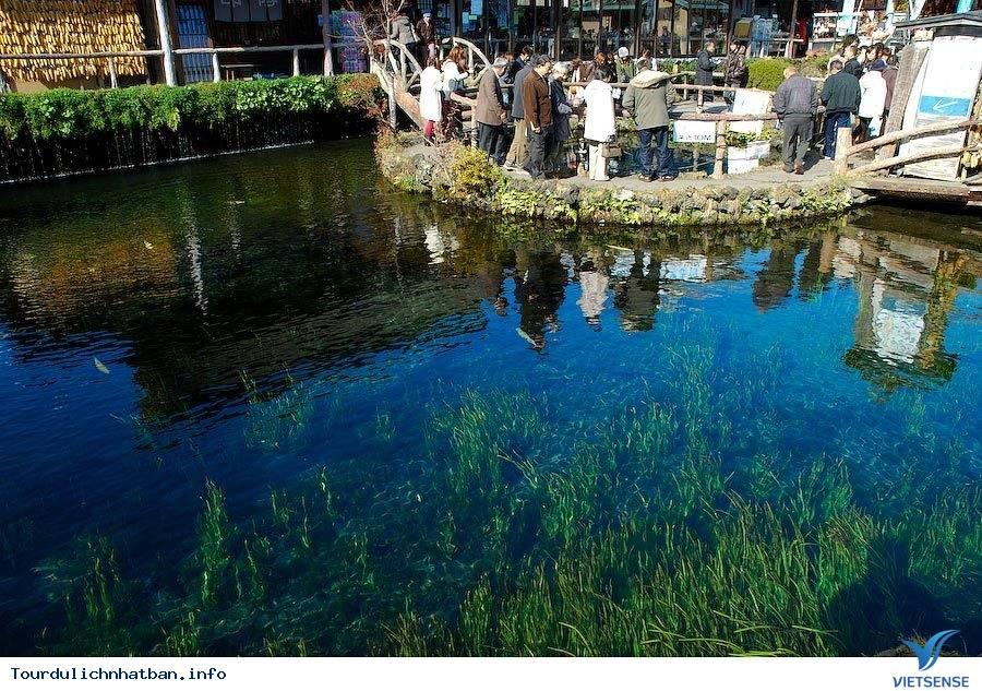 Những điểm tham quan cổ kính ở Nhật Bản thích hợp để bạn du xuân - Ảnh 1