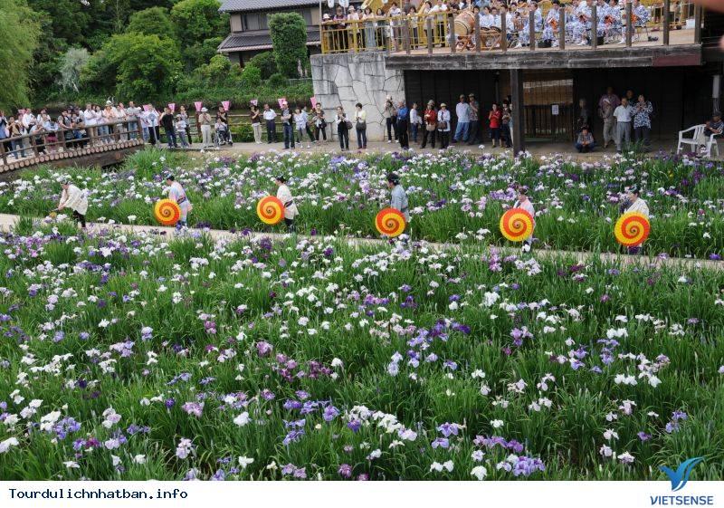 Những lễ hội hoa báo hiệu mùa hè ở Nhật Bản