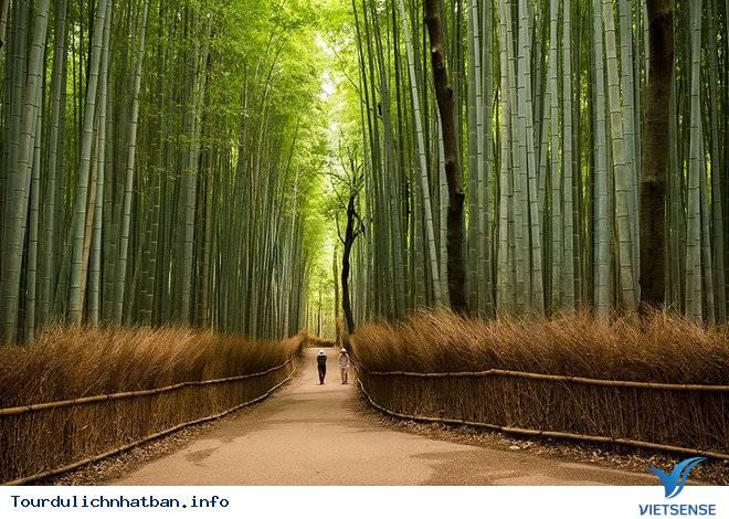 Những lý do khách du lịch luôn quay lại Nhật - Ảnh 1