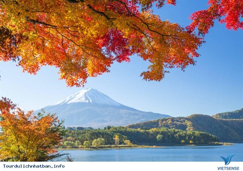 Núi Phú Sĩ- Linh Hồn Của Nhật Bản - Ảnh 4