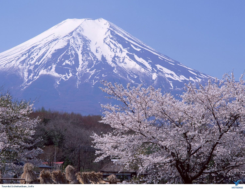 Núi Phú Sĩ Ở Nhật Bản, Nui Phi Si Nhat Ban