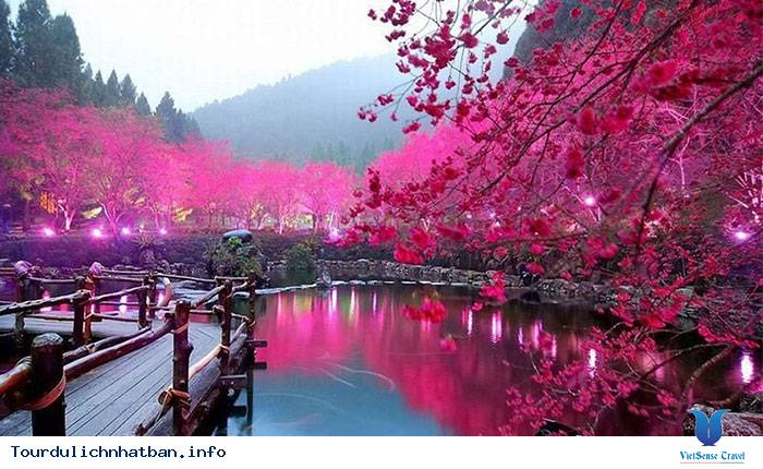Oshougatsu- Tết cổ truyền tại Nhật Bản