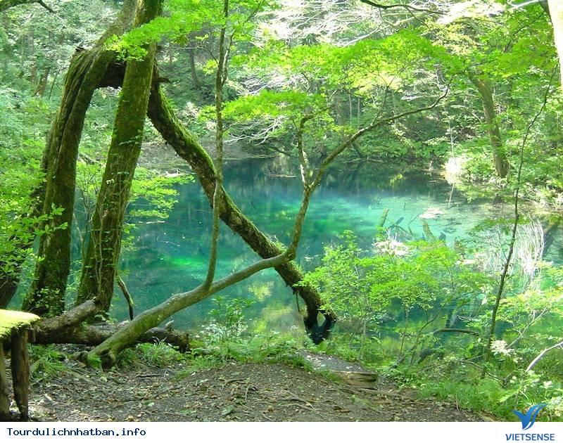 Phát hiện những tuyệt tác thiên nhiên tại Tohoku Nhật Bản - Ảnh 5