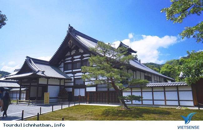 Review hành trình du lịch Nhật trong 9 ngày - Ảnh 5