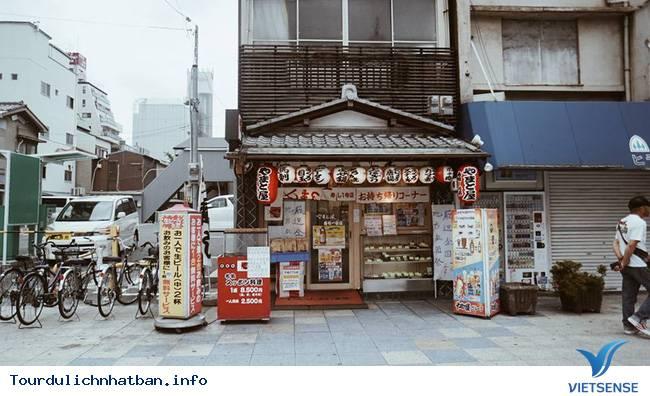 Review hành trình du lịch Nhật trong 9 ngày - Ảnh 1