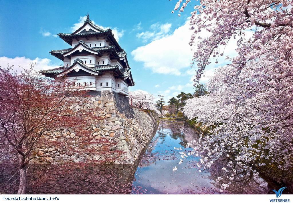 Top địa điểm thưởng thức hoa anh đào tại Nhật Bản lý tưởng - Ảnh 5