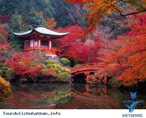 Tour du lịch Nhật Bản 5 ngày khởi hành tháng 10&11,tour du lich nhat ban 5 ngay khoi hanh thang 10