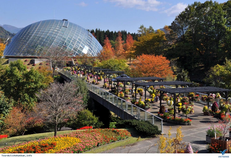 Tour du lịch Nhật Bản đến với thành phố Totori