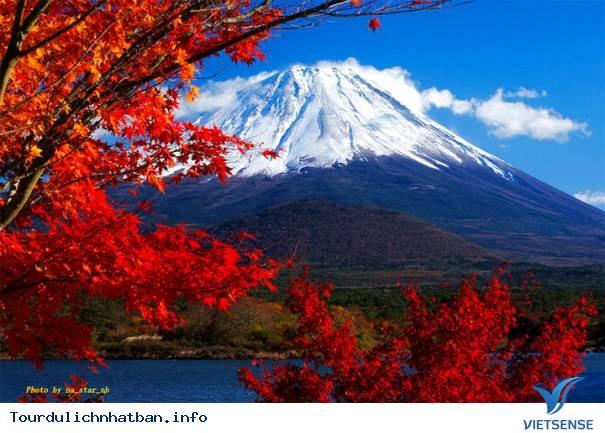 Tour Nhật Bản 6 ngày khuyến mại