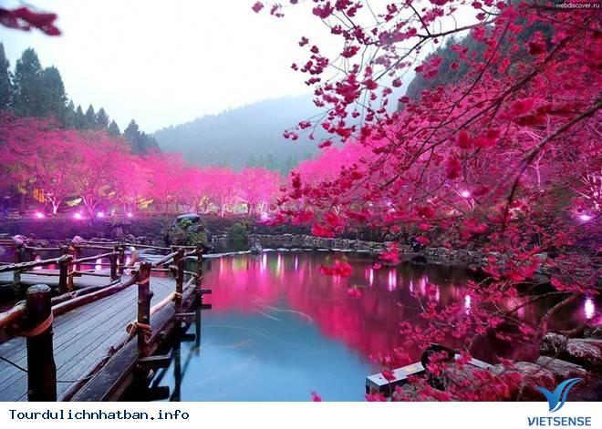 Tour Trọn Gói Du Lịch Nhật Bản Sẽ Đưa Bạn Đến Những Đâu,tour tron goi du lich nhat ban se dua ban den nhung dau